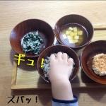 TOMATO畑スタッフによる食器活用術(1歳児編)