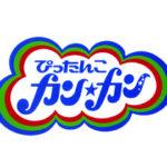 TBSさん制作「ぴったんこカンカン」1月17日放送にて弊社食器をお取り上げ頂きました。